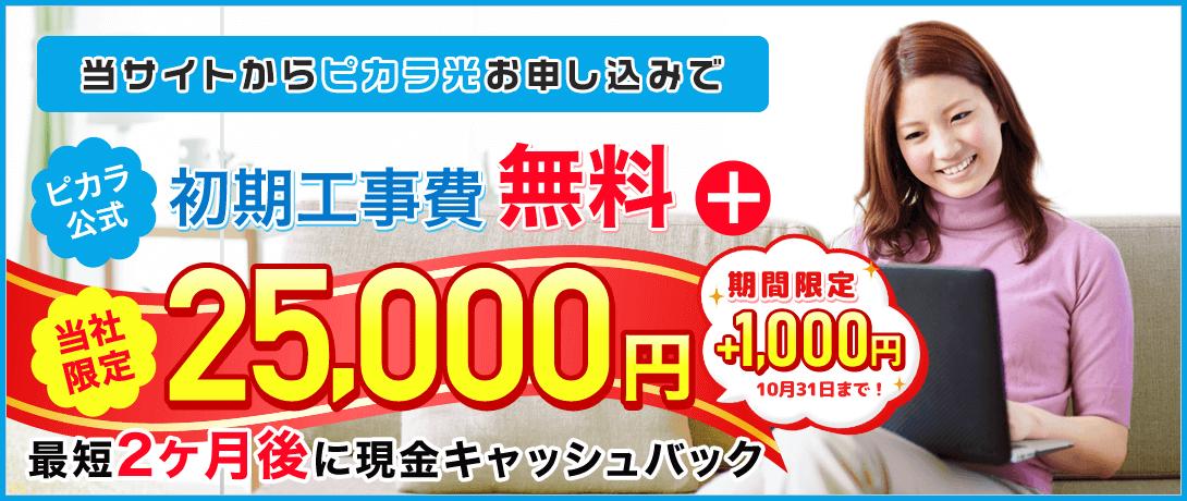 ピカラ光ねっと 代理店「株式会社NEXT」キャンペーン