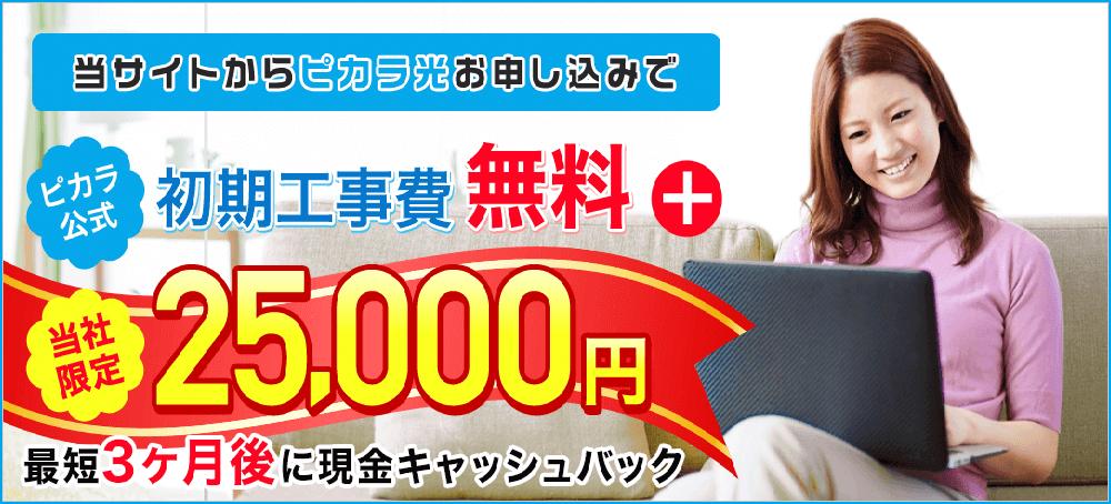 ピカラ光ねっと 代理店「株式会社NEXT」限定キャンペーン
