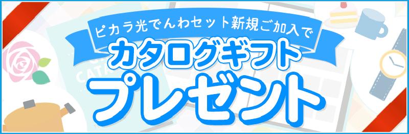 ピカラ光ねっと 公式キャンペーン「カタログギフトプレゼントキャンペーン」